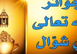 جوائز الله تعالى في شوّال
