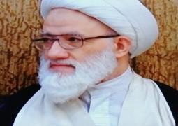 المرجع اليعقوبي يحث المؤمنين على زيارة يوم الغدير في النجف الأشرف في مختلف البلدان