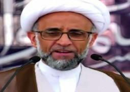 الشيخ الصفار: الارتقاء بحقوق الإنسان هو أفضل رد على المسيئين لنبينا الأكرم